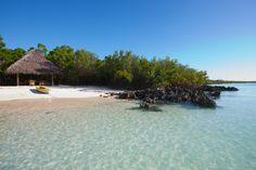 The World's Most Romantic Hotels: Vamizi Island, Mozambique | Fathom Travel Blog and Travel Guides