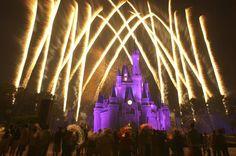 Ultimate Walt Disney World 2014 Planner | Fodor's