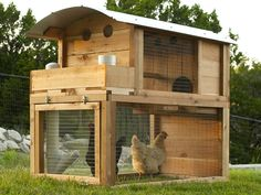 Round-Top Starter Chicken Coop   Urban Coop Company   Urban Backyard Chicken Coops