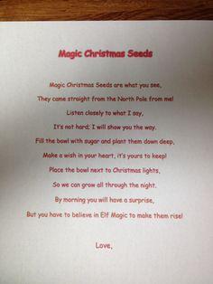 Magic Christmas seeds elf on the shelf