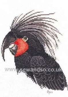Shop online for Palm Cockatoo Chart Booklet at sewandso.co.uk. Browse our great range of cross stitch and needlecraft products, in stock, with great prices and fast delivery.