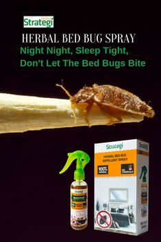Herbal Strategi Bed Bug Spray: Get rid of bed bugs (Khatmal Marne Ki Dawa) without the use of chemicals. Bed Bug Control, Pest Control, Household Cleaning Tips, Cleaning Hacks, Night Night Sleep Tight, Bed Bug Spray, Rid Of Bed Bugs, Bed Bugs Treatment, Bed Bug Bites