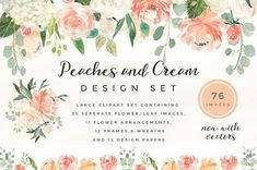 Wedding Flower Clipart Set- Peaches and Cream Perfect for pretty wall art, elegant branding, wedding invites and wedding stationary