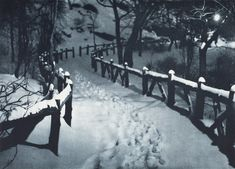 Adolf Fassbender :: Snow Caps, NYC, - Pictorial Artistry: The Dramatization Of The Beautiful In Photography Winter Photography, Vintage Photography, Landscape Photography, Nyc Snow, Define Art, Moving Photos, Winter Activities, Winter Is Coming, Light And Shadow