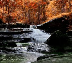 Autumn colours and waterfall.