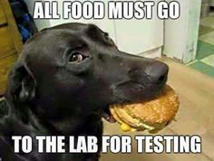 'Lab' testing. Hahaha judging by many labs I see there's lots of testing going on out there.
