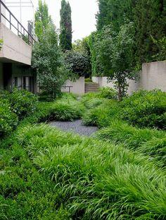 Hakonechloa macra. Jardín Aravaca. Paisajismo Miguel Urquijo http://www.urquijokastner.com