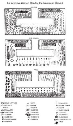 Garden Planning I LOVE this design for a raised planter! It maximizes space for and access to all plants! This is my dream veggie garden.