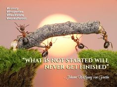 """What is not started will never get finished"" - Johann Wolfgang von Goethe  #Quote"