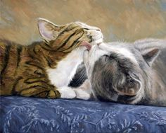 Les chats de Lucie BILODEAU