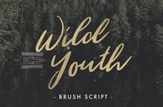 Wild Youth is another beautiful hand drawn brush script font from Jeremy Vessey. Wild Youth is a modern font with the distinct influence of adventure and the great outdoors. Perfect for logos, quotes, stationary, apparel and much more - Free for personal & commercial use DOWNLOAD WIL