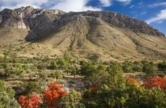 Guadalupe Mountains National Park  -   Where: Texas
