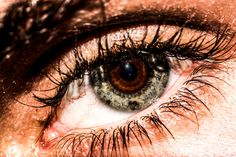 EyeEye - Double eye concept, how does another eye see the world differently