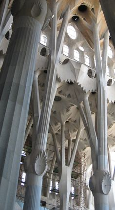 Gaudis, la sagrada familia,   what an amazing building, green conception, trees, leaves, flowers...