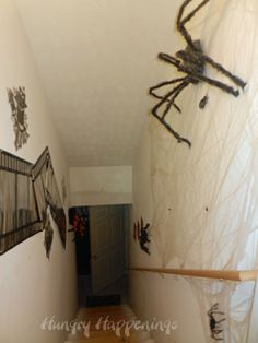 Spiders leading into the basement