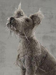 dog scuptures Helen Thompson 8