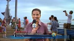 Shark Week: The King of Summer Since '87 : Video : Discovery Channel