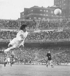 Santillana Real Madrid