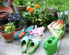 Gartenarbeiten nach Monaten http://www.gartenmonat.de #gartenkalender