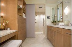 Subtle shower door