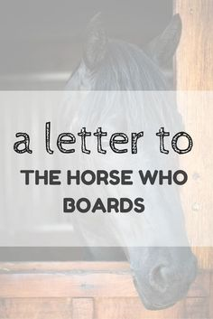 There are lot's of different types of horse ownership but today I want to talk about boarding... so I wrote a letter to the horse who boards.