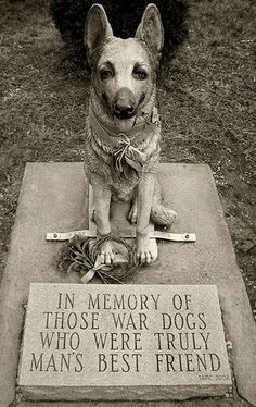 War Dog Memorial - Dover, NH. Man's best friend deserve's a hero's recognition for his/her front line service.