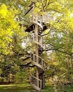 Did you ever have a Treehouse? | Susan Gabriel, Author