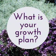 New Tricks, How To Plan, Future, Future Tense