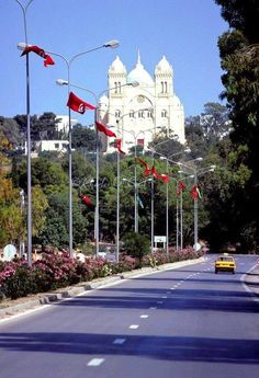 #Carthage #Tunisia #SunnySunday
