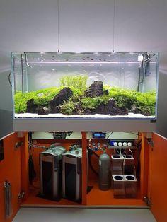 Aquariums Provide Relaxing Entertainment Owning a fish aquarium can be a very relaxing hobby. Aquarium Sump, Aquarium Stand, Nature Aquarium, Home Aquarium, Aquarium Design, Reef Aquarium, Aquarium Fish Tank, Planted Aquarium, Aquascaping