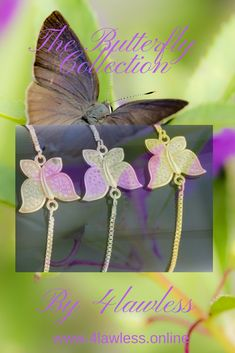 The Butterfly Collection! Fashion Accessories, Butterfly, Board, Animals, Shopping, Collection, Animales, Animaux, Bowties