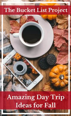 There are a variety of amazing day trip ideas for Fall. That is why you shouldn't be too stuck with this list of ideas to do this season. Discover some amazing Fall Activities to do with your whole family! #AutumnVibes #FallColors #Pumpkins #bucketlist Cozy Christmas, Christmas Lights, Vintage Christmas, Christmas Aesthetic Wallpaper, Christmas Wallpaper, Bucket List Ideas For Women, Best Bucket List, Road Trip Snacks, Road Trips