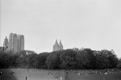 central park. by emi bell.