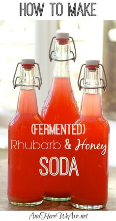 How to Make Fermented Rhubarb & Honey Soda. You'll Need: Rhubarb, honey (or sugar, or sucanat), and whey (strained from plain yoghurt). Plus: swing-top bottles, a funnel, a demijohn (aka: 1 gallon glass jug), and an airlock).
