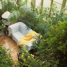 Комната, диван, пальмы