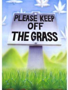 Keep Off The Grass Wallpaper 420 Science, Art Corner, Logo Sticker, Art Logo, Mobile Wallpaper, Cannabis, Coffee Shop, Grass, Hemp