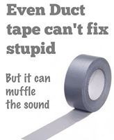 Even Duct tape can't fix stupid. but at least it can muffle the sound! Just For Laughs, Just For You, Cant Fix Stupid, Stupid People, Hate People, Crazy People, Funny People, Funny Quotes, Funny Memes