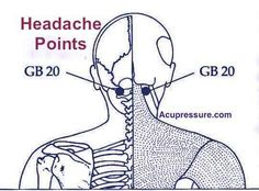 Acupressure Points for Headaches, Stiff Neck & Pain Relief Acupressure PointsAcupressure Point Location of GB Below the base of the skull, in the hollows on both sides of the neck, between the two vertical neck muscles. You will feel these large hol Acupressure Points For Headache, Acupressure Treatment, Acupuncture Points, Neck Pain Relief, Headache Relief, Migraine Headache, Stress Relief, Jin, Sternocleidomastoid Muscle