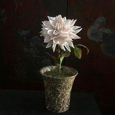 Table Centerpieces, Vase, Photo And Video, Plants, Instagram, Home Decor, Centerpieces, Decoration Home, Room Decor