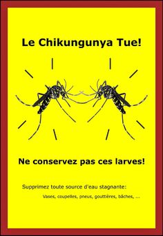 Prévention Chikungunya!