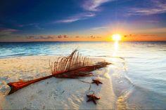 Starfish beach,  grand Cayman islands