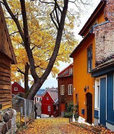 Fall in Oslo, Norway