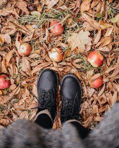 Autumn Aesthetic, Aesthetic Indie, Aesthetic Photo, Autumn Day, Autumn Leaves, Autumn Winter Fashion, Autumn Photography, Fall Weather, Fall Harvest