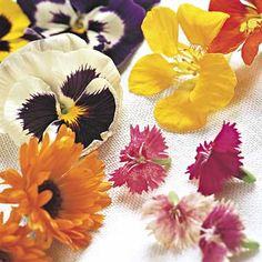 Choosing Edible Flowers Edible flowers add unexpected color and flavor to salads and other foods.