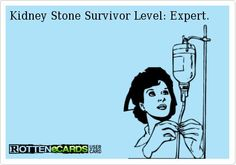 Stories and Lessons from a Kidney Stone: Part I Kidney Stones Funny, Passing Kidney Stones, Kidney Stone Humor, You Make Me Laugh, Kidney Health, Medical Humor, Kidney Disease, Told You So, Memes
