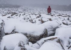 A snow dusted boulder field at the top of the ice house track. One part of our Alpine Loop guided walking tour of kunanyi / Mt Wellington Hobart Tasmania. Alpine Loop, Ice Houses, Hiking Tours, Tasmania, Walking Tour, Bouldering, Geology, Walks, Track
