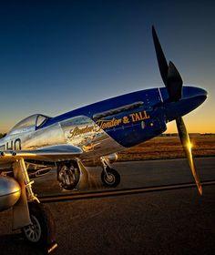 F&O Fabforgottennobility: Photo Air Fighter, Fighter Pilot, Fighter Jets, Ww2 Aircraft, Fighter Aircraft, Military Aircraft, P51 Mustang, Aircraft Painting, Airplane Art
