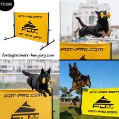 Kutya akadályok könnyű «Magasra ugrani». Alumínium és polimer vászon, magasságállítás 50 cm és 100 cm között, eltávolítható csapok a talajhoz rögzítéshez, a kiképzésekhez használatos, az akadály a IGP (IPO, VPG, Schutzhund) - rendszer kiképzésében és fellépésein használják, 1,5 méter széles.  #kutya #kiképzés #felszerelés #igp #ipo #schutzhund #workingdog #workingk9 #ipodog Movies, Movie Posters, Art, Art Background, Films, Film Poster, Kunst, Cinema, Movie