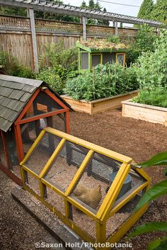 Garden with raised beds, wood chip paths, and a colorful chicken playground.