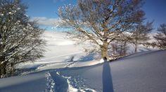 Luci e ombre in Lessinia - Febbraio 2014
